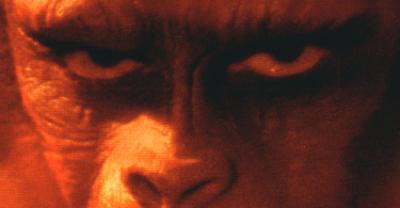 20080121102623-apes-201968-20bg.jpg