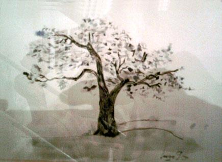 20111121103840-foto0306.jpg