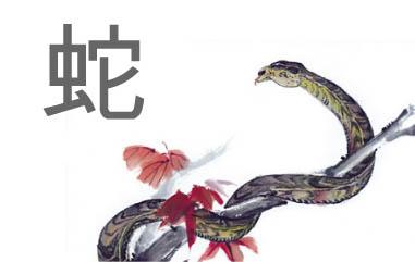 20130129105421-serpiente.jpg