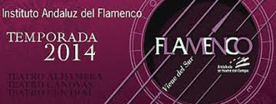 20140218111833-flamenco-viene-del-sur.jpg