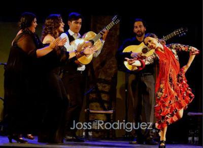 20140811100254-gala-flamenca.jpg