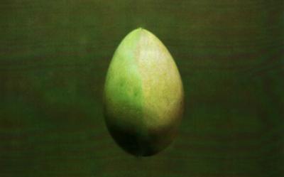 20150320093600-huevo.jpg