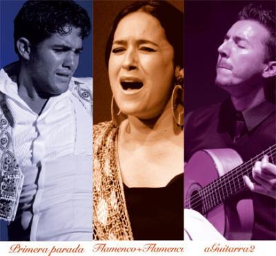 Flamenco itinerante